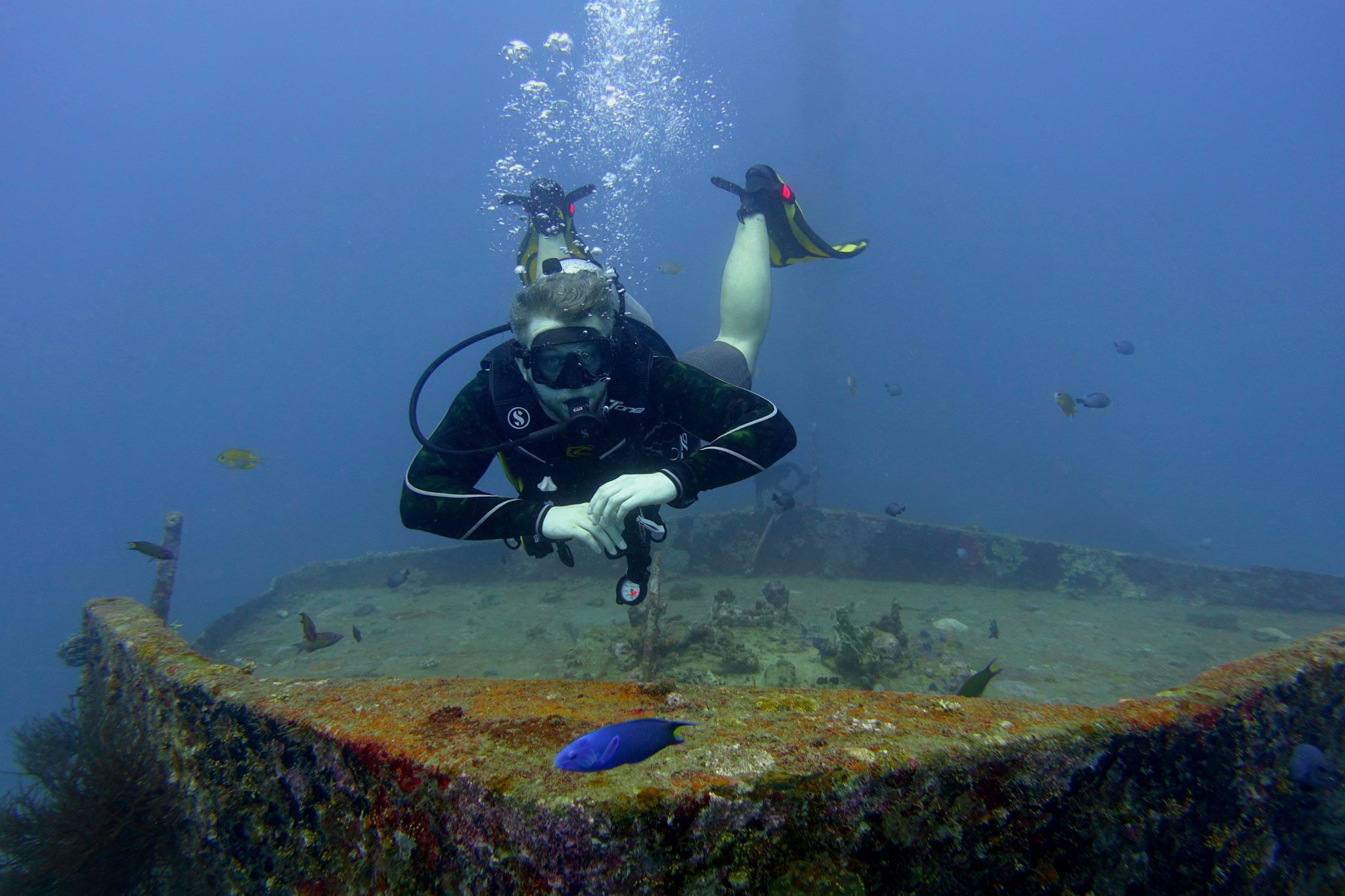 Advanced Open Water Course and fundives.